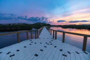 Floating Dock Walkway Sunset