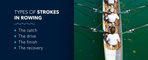 Types of strokes in rowing