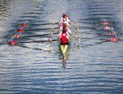 Boys professional rowing